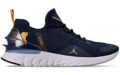 Мужские кроссовки Jordan React Havoc Michigan